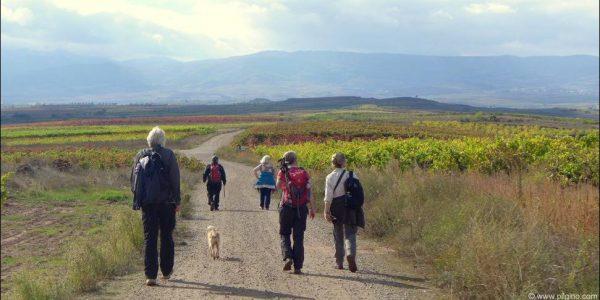 Gruppe von Weinwanderern