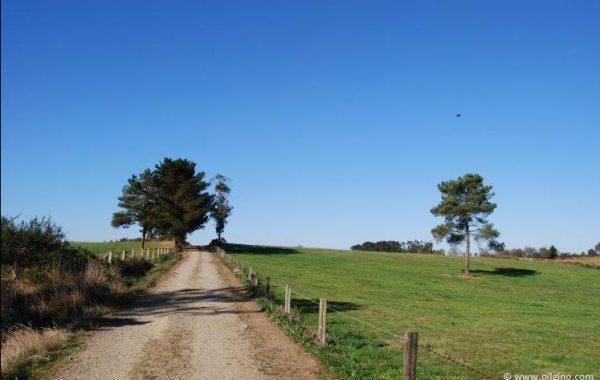 Pilgerweg hinter Cornado
